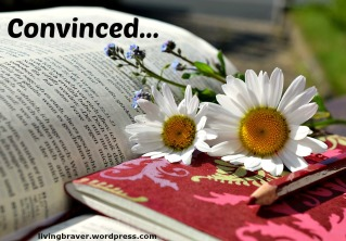 daisies-with Bible1